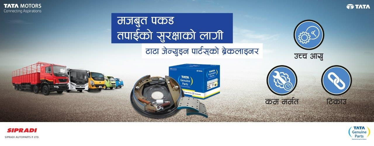 Tata Genuine Parts Brake Lining